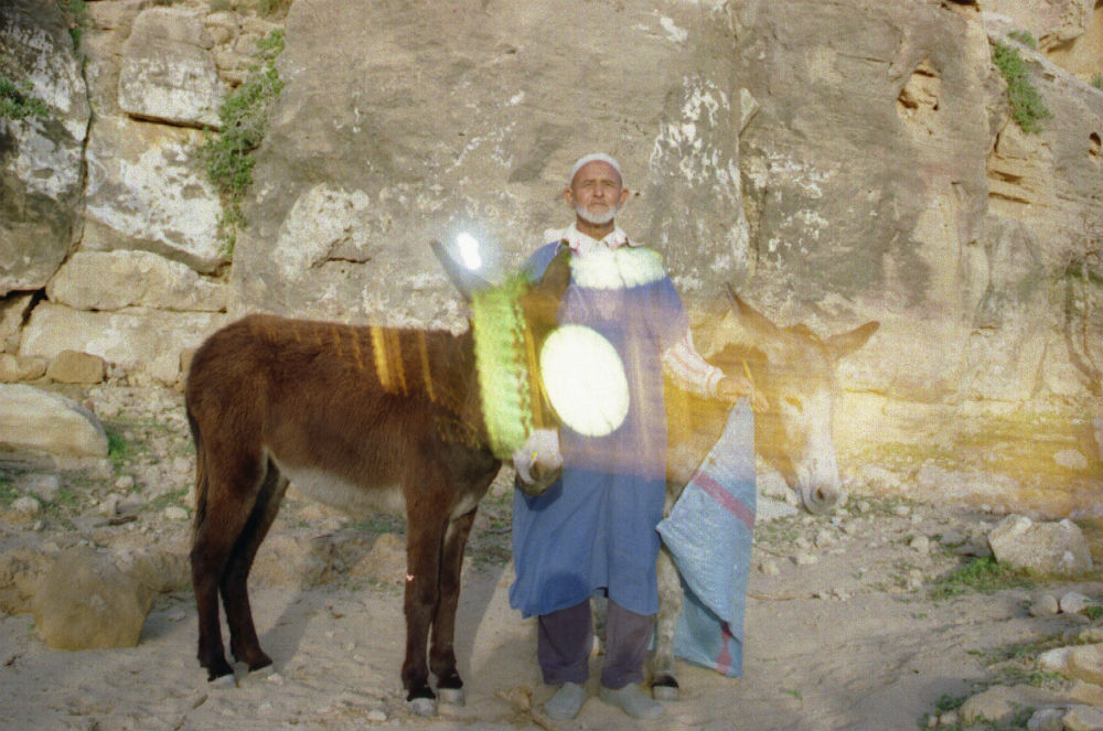 A man standing with donkeys